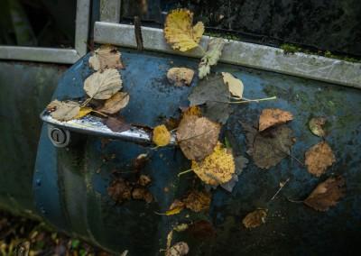 Autumn leaves, heter en god gammel slager.