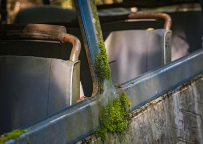 Høstsolen gir et spennende lys til bussens patina.