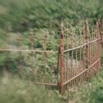 Overgitt kirkegård i nabolandet